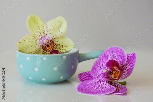 swieza-menchia-i-kolor-zolty-phalandopsis-orchidea-i-blekitny-puchar-na-bialym-tle-koncepcja-spa-i-relaks