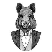 Aper, Boar, Hog, Wild Boar, Hog, Hipster Animal Hand Drawn Image For Tattoo, Emblem, Badge, Logo, Patch, T-shirt