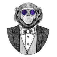 Chimpanzee Monkey Hipster Animal Hand Drawn Illustration For Tattoo, Emblem, Badge, Logo, Patch, T-shirt