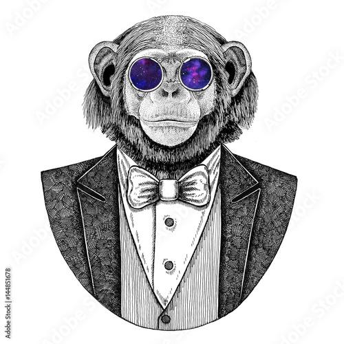 szympans-malpa-hipster-zwierze