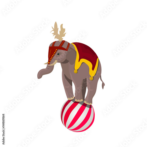 circus elephant balancing on ball Poster