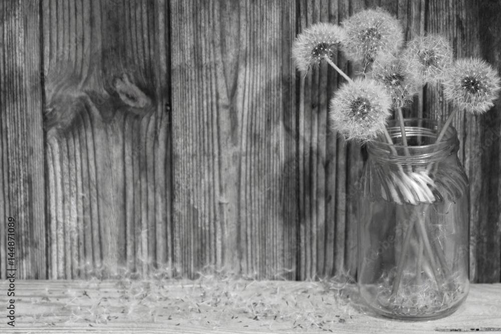 Fototapeta Black and white flowers