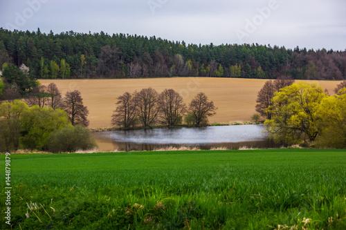 Fototapeta Landscape of Czech countryside. Natural background Europe Czech Republic obraz na płótnie