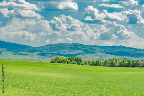 Keuken foto achterwand Donkergrijs Spring landscape of the hills of southern tuscany
