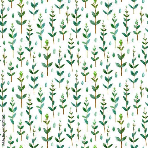 kwiecisty-bezszwowy-wzor-eukaliptusowe