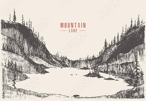Valokuvatapetti Vector illustration mountain lake pine forest draw