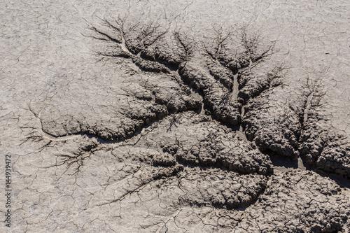 Zdjęcie XXL sucha ziemia z pęknięciami sucha
