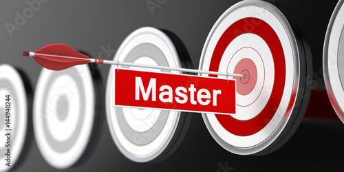 Photo  Master / Target / 3d / Arrow