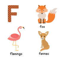 Letter F. Cute Animals. Flamin...