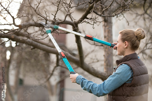 Fotografía  Young woman taking care of garden. Cutting tree branch.