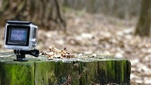 Action Camera Record Stump Wit...