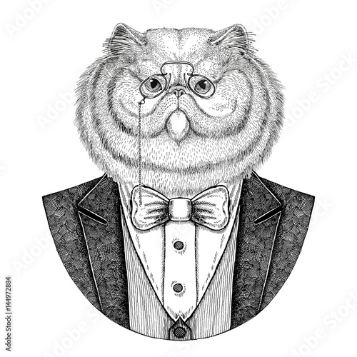 portrait-of-fluffy-persian-cat-hipster-animal-hand-drawn-illustration-for-tattoo-emblem-badge-logo-patch-t-shirt