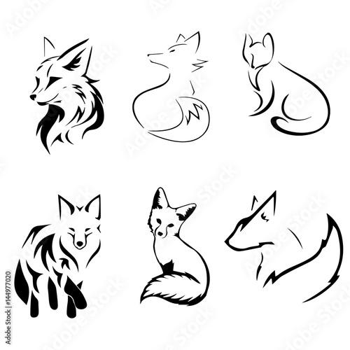 Plagát  fox