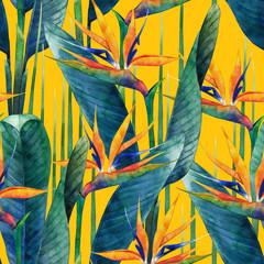 FototapetaWatercolor strelitzia pattern