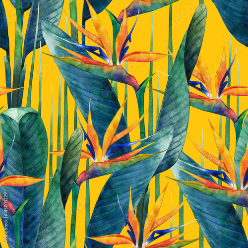 Garden Poster Bird-of-paradise flower Watercolor strelitzia pattern