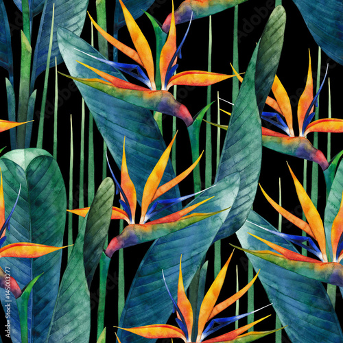 Deurstickers Paradijsvogel Watercolor strelitzia pattern