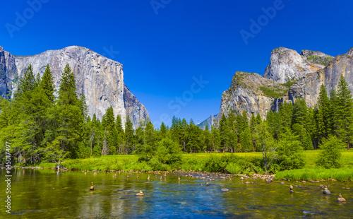 Merced River at Yosemite National Park Wallpaper Mural