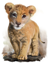 Lion Baby Watercolor Painting