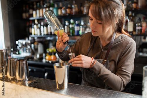 barmaid with shaker preparing cocktail at bar Wallpaper Mural