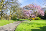 Stanley Park, Liverpool, England, UK - 145116802