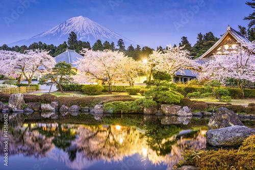 Gardens and Mt. Fuji in spring from Shizuoka, Japan.