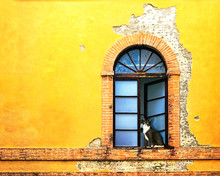 Window On Colorful Wall In Siena Italy