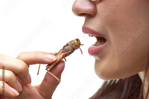 Fotografia, Obraz Asian female eating fried locust - Eating insect concept