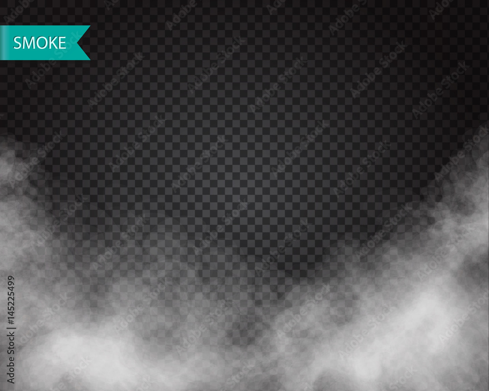 Fototapety, obrazy: Clouds or smoke vector on transparent background