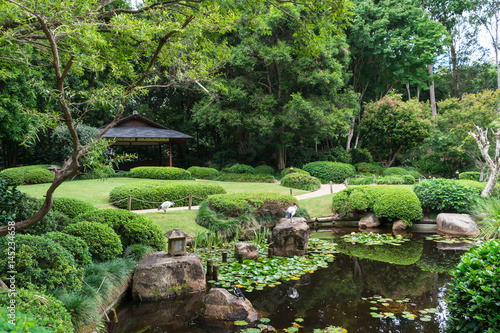 The beautiful peaceful view on small lake with rocks, birds ibis, little japanese lighting appliance and water lilies in Japanese Garden, Brisbane Botanical Garden, Australia