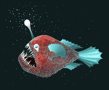 Anglerfish Colored Illustratio...