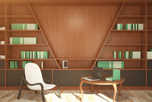 Contemporary Library With Blank Wall