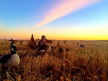 Morning Waterfowl Hunt