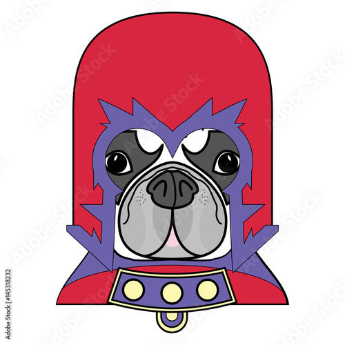 Valokuva  Comic Villain symbol in costume with cape, mask in red,yellow, blue and purple