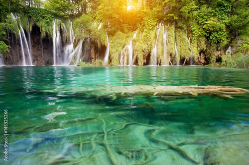 Foto op Plexiglas Groene Beautiful summer forest waterfall