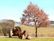 canvas print picture - Bagger auf Feld neben einen Baum