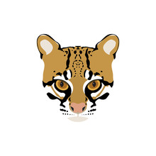 Vector Portrait Of Ocelot. Wild Cat.