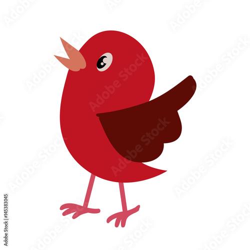 Photo Bird cute cartoon icon vector illustration graphic design