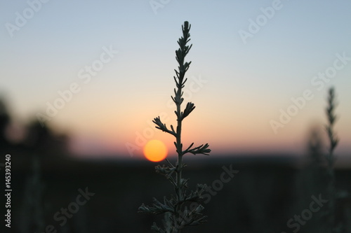 Recess Fitting Brick Beauty of the sunrise
