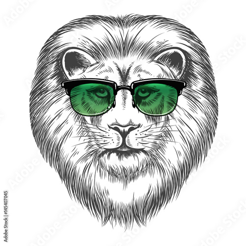 Poster Croquis dessinés à la main des animaux Hand drawn lion in sunglasses isolated on white background. Hipster lion print design vector illustration