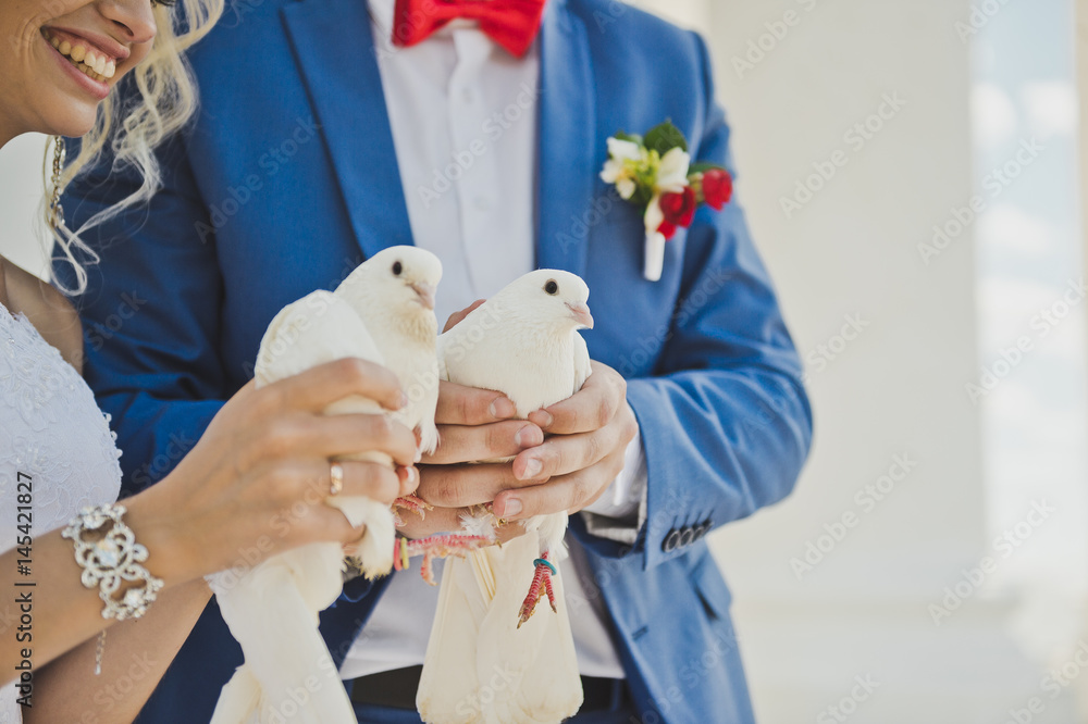 Two snow white doves in the hands of the newlyweds 7853.