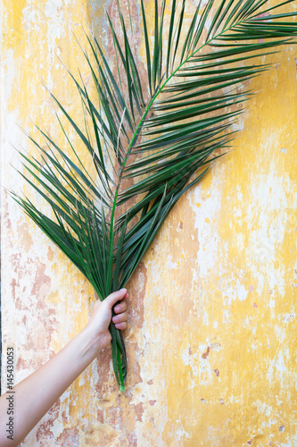 Tropical palm branch in woman hand in front of beautiful old vintage antique rough wall as travel, tourism, celebration, history, traditional culture background