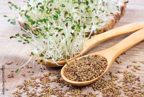 Photo Fresh alfalfa sprouts and seeds - closeup.