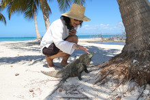 Lady Fondle Cuban Rock Iguana On The Beach