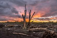 Sunrise At Hokitika On The Wes...