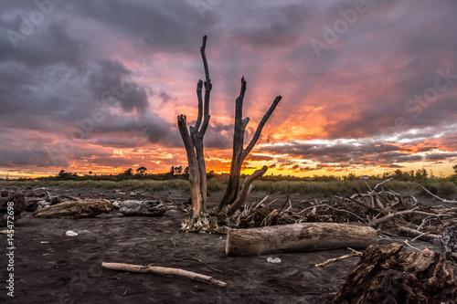 Marron chocolat Sunrise at Hokitika on the West Coast of New Zealand's South Island.