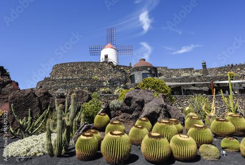 Deurstickers Canarische Eilanden Beautifully designed cactus garden on Lanzarote, Canary Islands