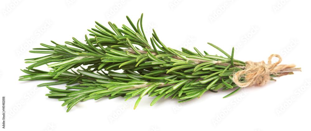 Fototapety, obrazy: Fresh rosemary branch, isolated on white background