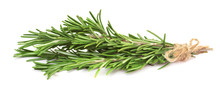 Fresh Rosemary Branch, Isolated On White Background