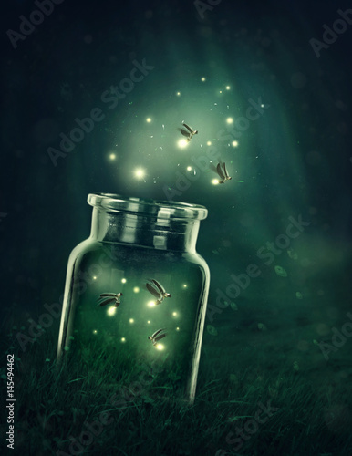Fototapeta  Fireflies leaving the glass