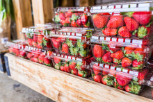 Closeup Of Many Strawberries I...